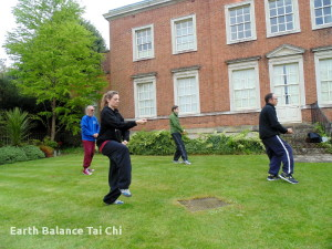 World_Tai_Chi_Day_2015_EarthBalanceTaiChi_12