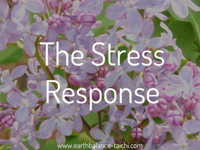 Help Reduce Stress