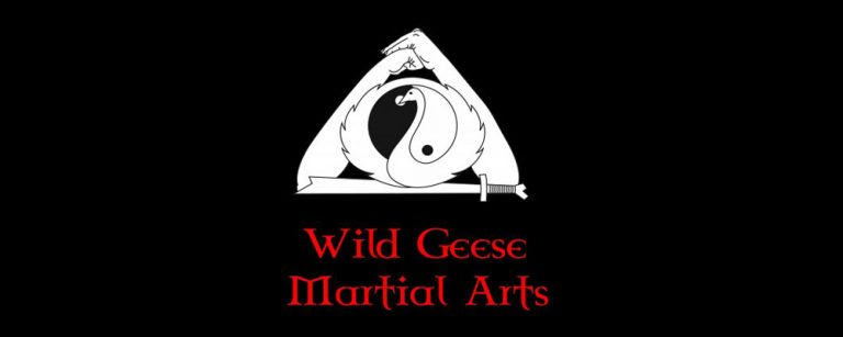 Recommending Wild Geese Martial Arts
