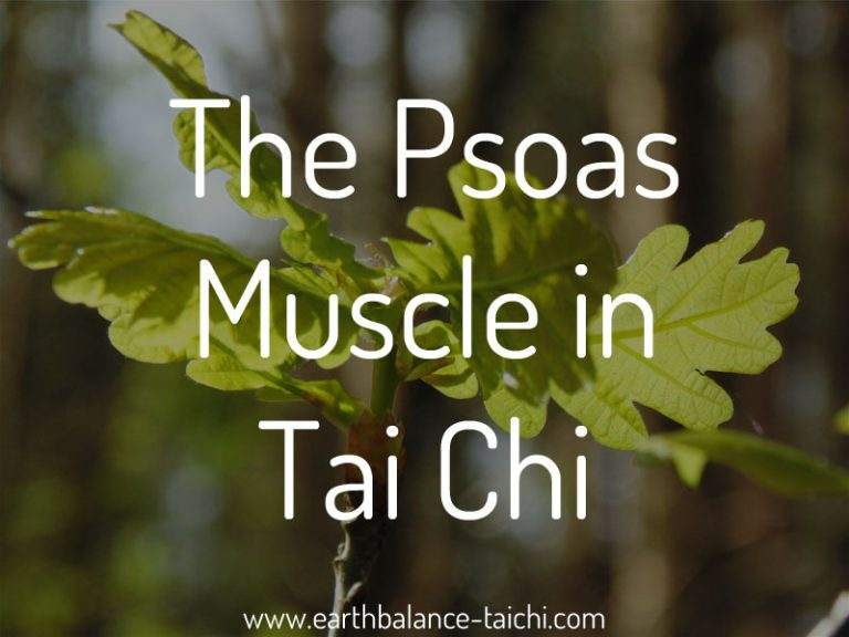 Psoas Muscle in Tai Chi