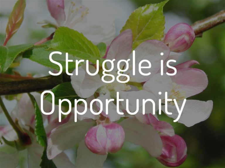 Struggle is Opportunity