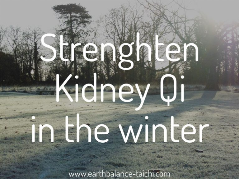 Winter Qi for the Kidneys
