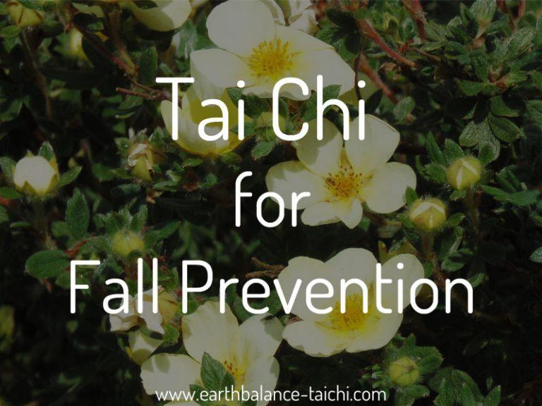 Tai Chi Qigong Fall Prevention