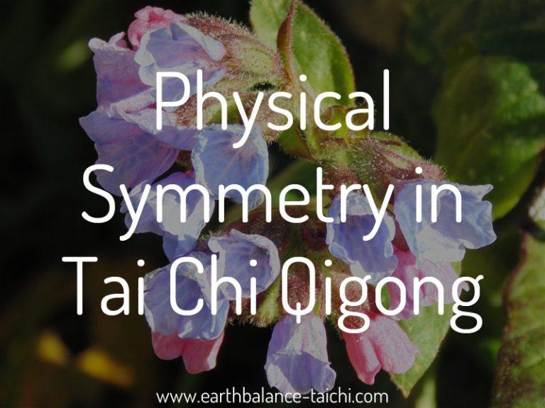 Physical Symmetry