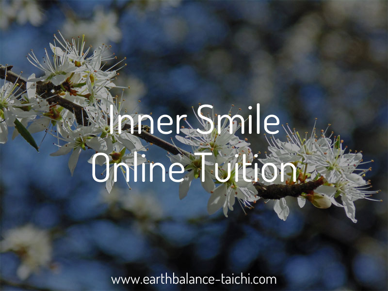 3f3a89fbe Inner Smile Online Tuition - 1 Hour Live Online Lesson