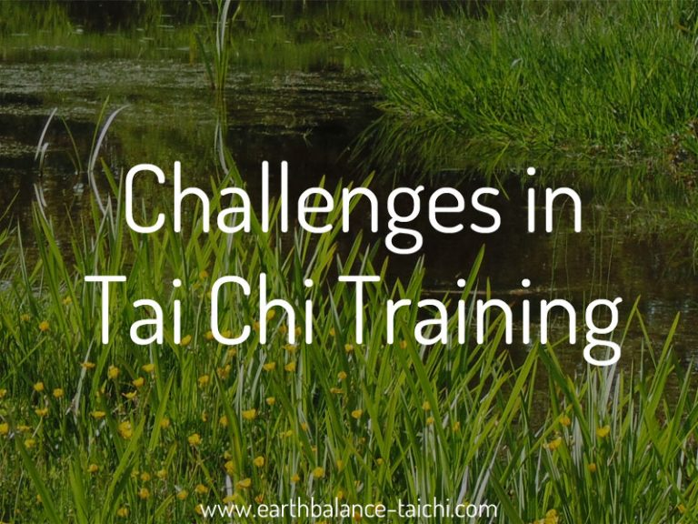 Challenges in Tai Chi Training