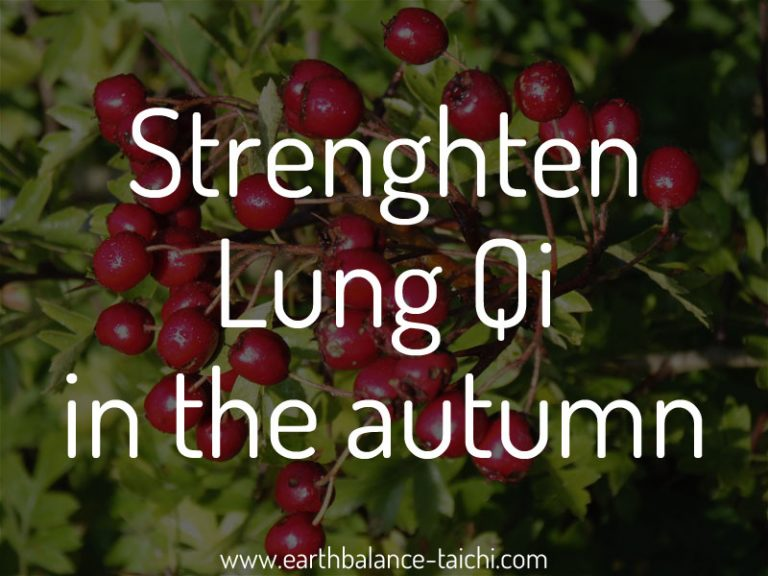 Autumn Qi for the Lungs